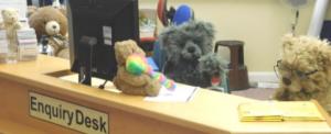 Teddy Bear Creche